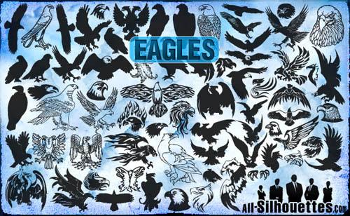 bald eagle desktop backgrounds
