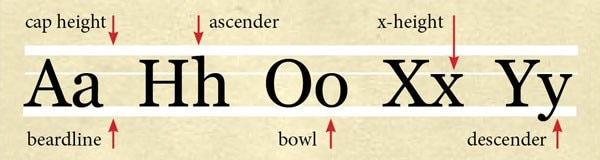Typography Basics: Understand the Language of Letters