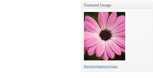 how to add multiple featured images in wordpress