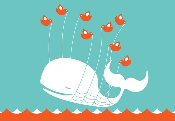 Twitter Whale