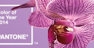 Pantone Color of the Year 2014 – Radiant Orchid: Perfect Accent Color