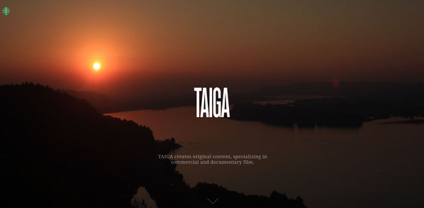 We are Taiga