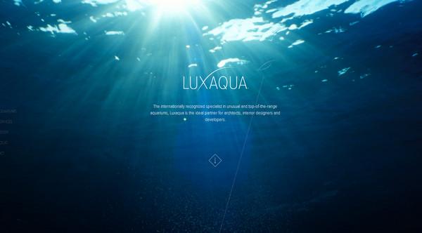 바다와 수중세계를 테마로 한 웹사이트에 풍덩 빠져보세요! http://t.co/vOHGHNbRXR