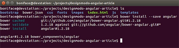 Angularjs Instalation
