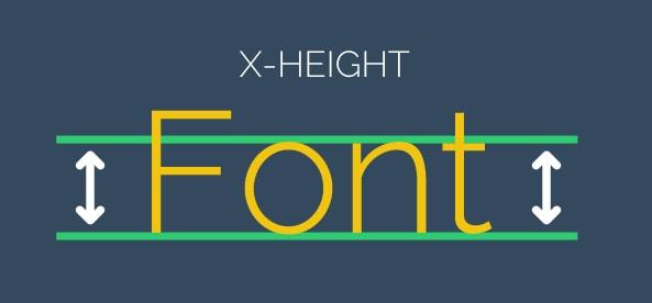 x height