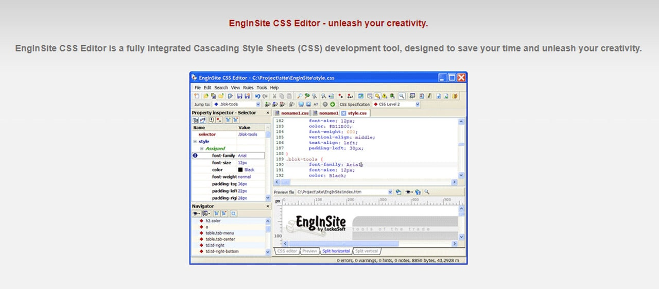 EnginSite Editor