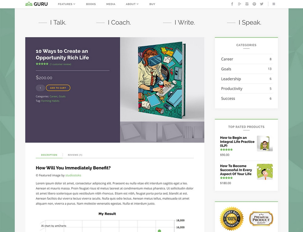 WordPress Theme Modern Design