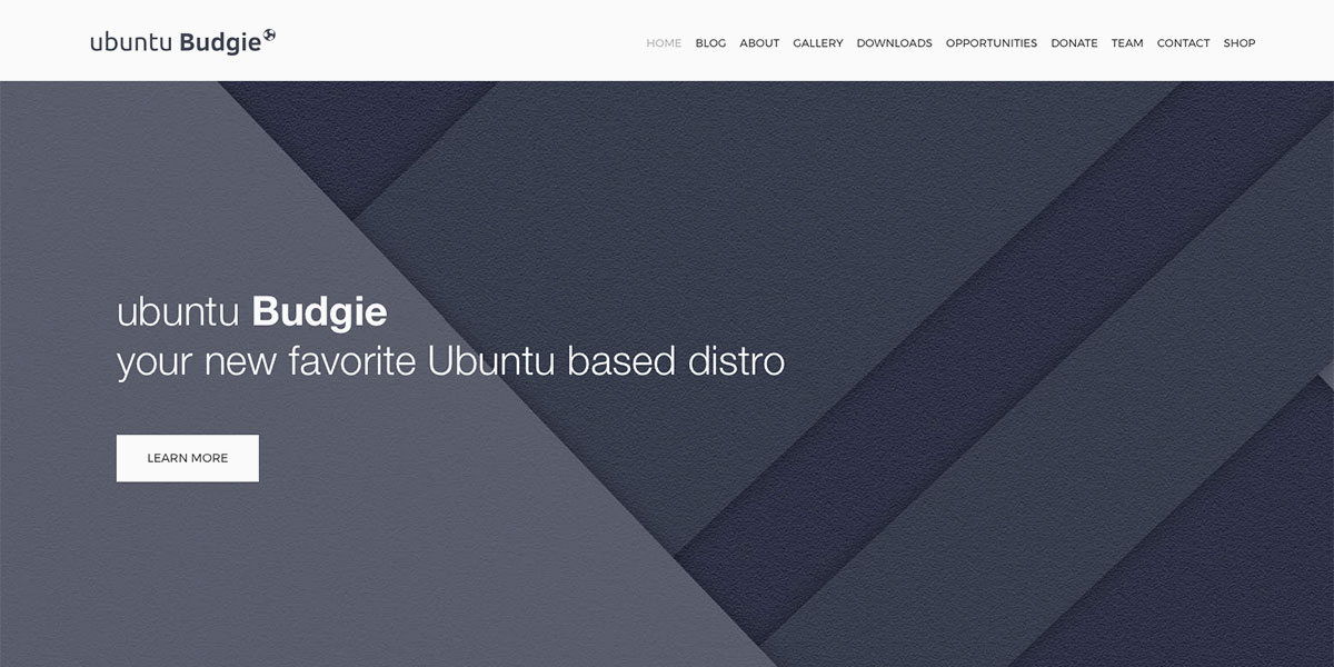 Ubuntu Budgie Pagekit based website