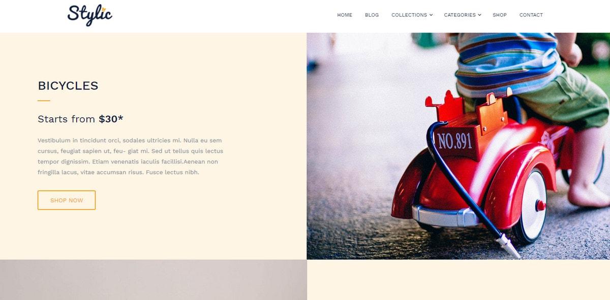 Online store creation WordPress