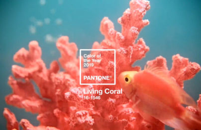 Pantone's Color of The Year is Living Coral, Examples of Use