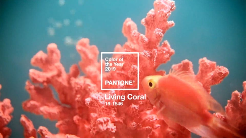 Pantone´s Color of The Year is Announced