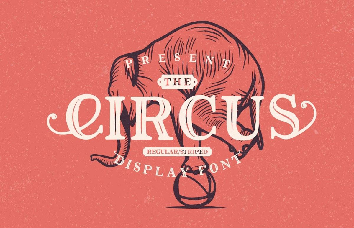 Circus Display
