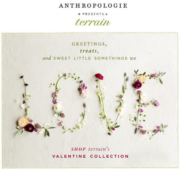 Email Newsletter from Anthropologie