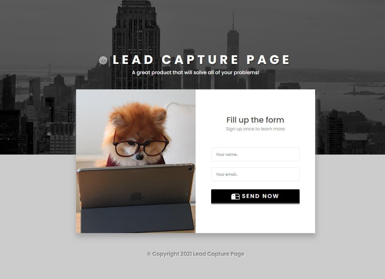 Simple lead capture app